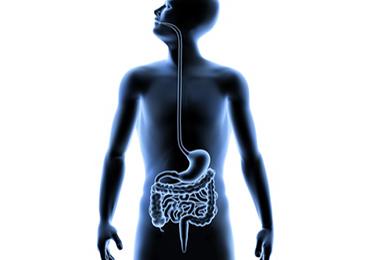 Evitar y controlar el Esófago de Barret, medida de prevención del cáncer de esófago