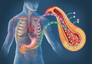 El tabaco es el principal factor de riesgo para padecer un cáncer de páncreas