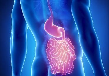 Diarrea, vómitos, estreñimiento, inflamación: problemas digestivos del paciente oncológico