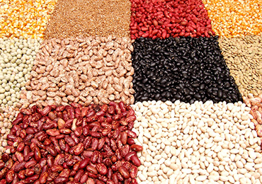 Las legumbres no engordan porque aportan una excelente proteína vegetal