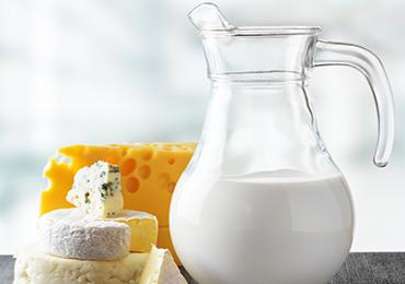 Importancia de la leche y sus derivados en la alimentación