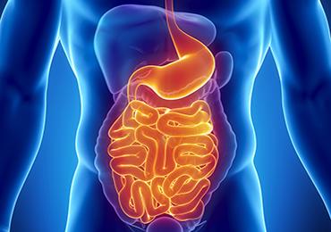 Enfermedad Inflamatoria Intestinal: causas, síntomas y tratamientos
