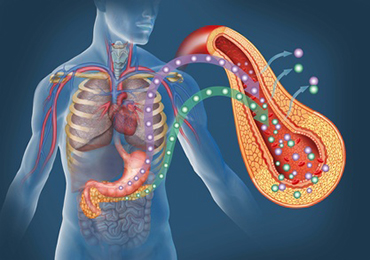 Signos de alerta de la pancreatitis aguda y crónica