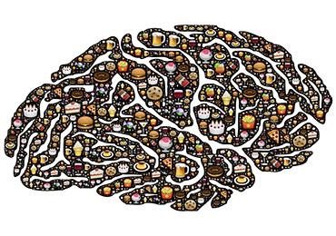 El aparato digestivo es nuestro segundo cerebro