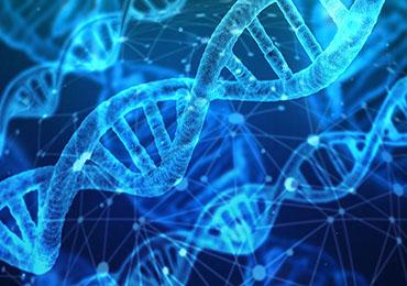Beneficios para la salud de la nutrigenética y la nutrigenómica