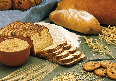 Hidratos de carbono, los alimentos que nos aportan energía